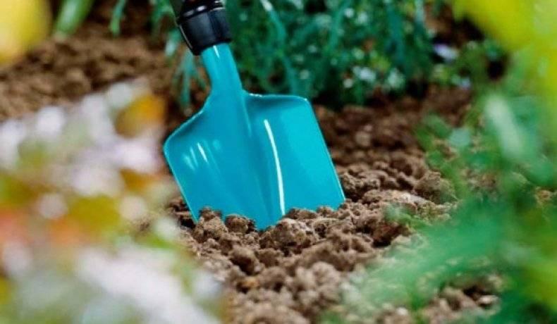 Инструкция по применению препарата зенкор от сорняков на картофеле: отзывы