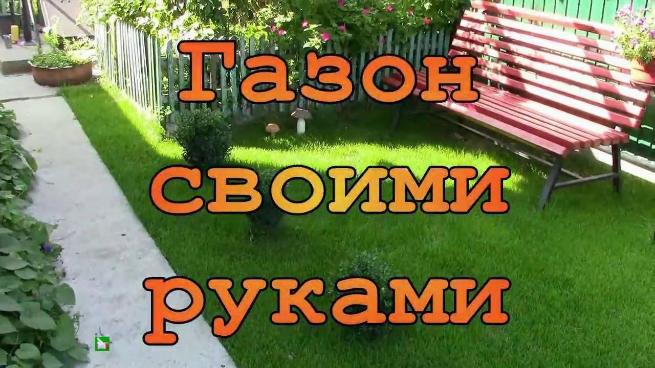 Как правильно посеять газон своими руками: пошаговая инструкция