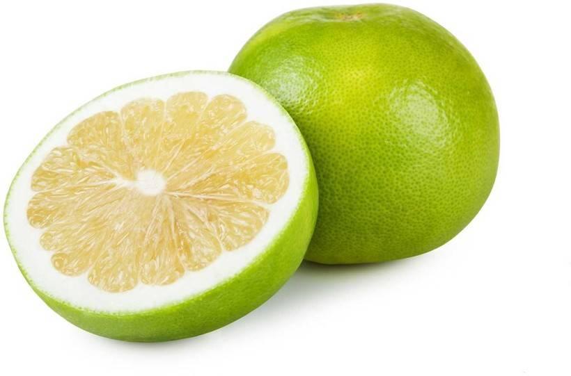 Свити - описание фрукта, фото, полезные свойства и противопоказания, состав, калорийность