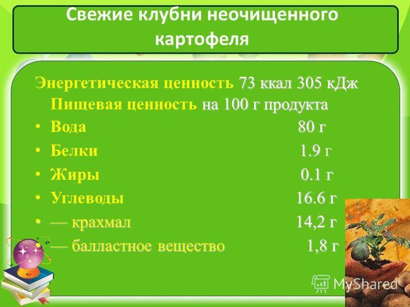 Пищевая ценность картофеля, его химический состав :: syl.ru