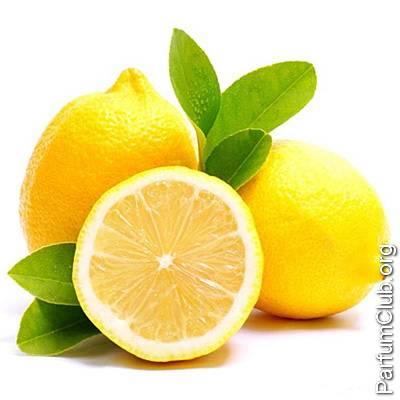 К чему снится лимоны. видеть во сне лимоны - сонник дома солнца