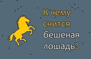 Лошадь нападает