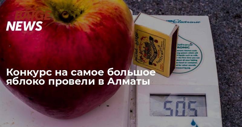 10 интересных фактов о яблоках – полезнейших фруктах для человека