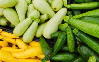 В чем разница цукини и кабачков?