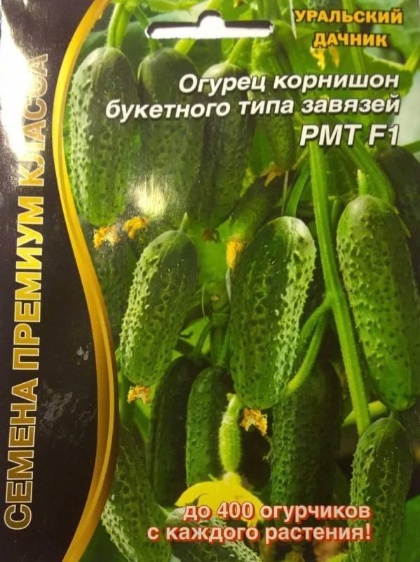 Огурец мэлс f1: описание, достоинства, технология выращивания рассады, посев семенами в грунт, особенности ухода, отзывы