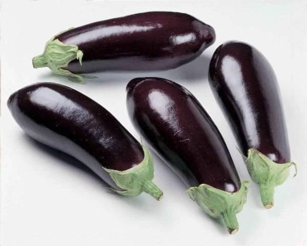 Баклажан: калорийность блюд на 100 грамм