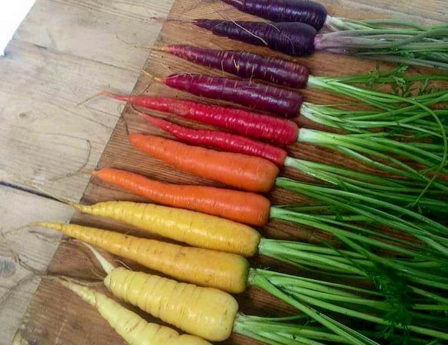 Морковь с зелёной сердцевиной