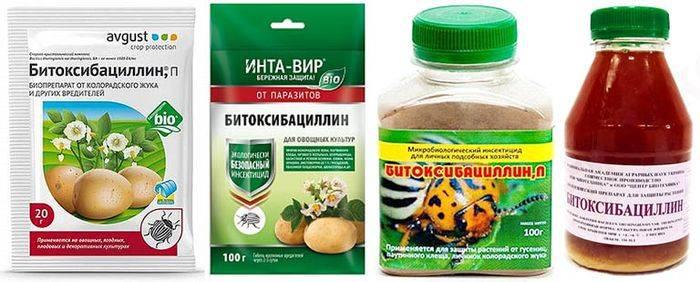Биоинсектицид «битоксибациллин» — состав, принцип действия, регламент применения, совместимость