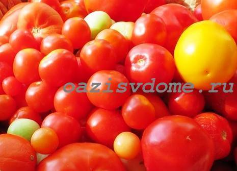 Сроки посева семян перца на рассаду в подмосковье: когда сажать, посадка в открытый грунт русский фермер