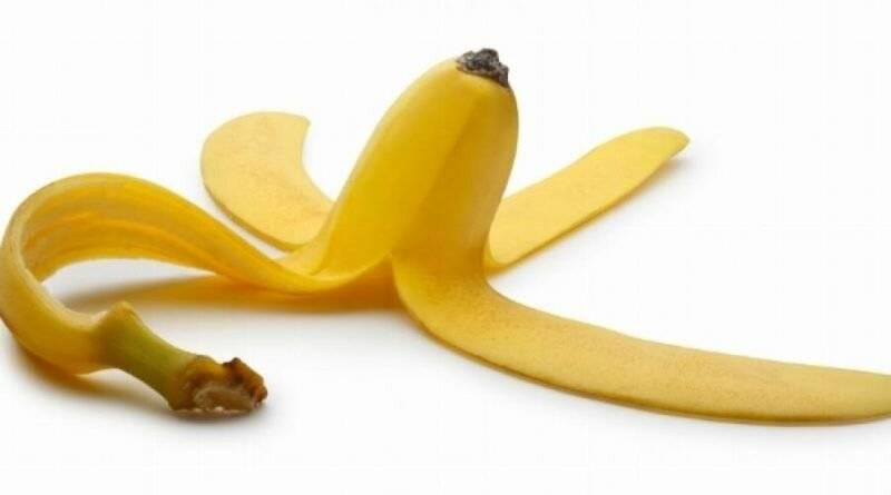 Удобрение из банановой кожуры для комнатных растений — применение