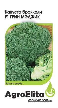 Брокколи грин мэджик f1: описание капусты, отзывы, правила и особенности выращивания от посева до сбора и хранения урожая
