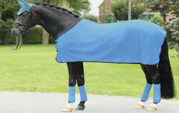 Попона для лошадей: что это такое, размеры