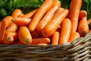 Морковный сок при беременности: можно ли пить будущим мамам
