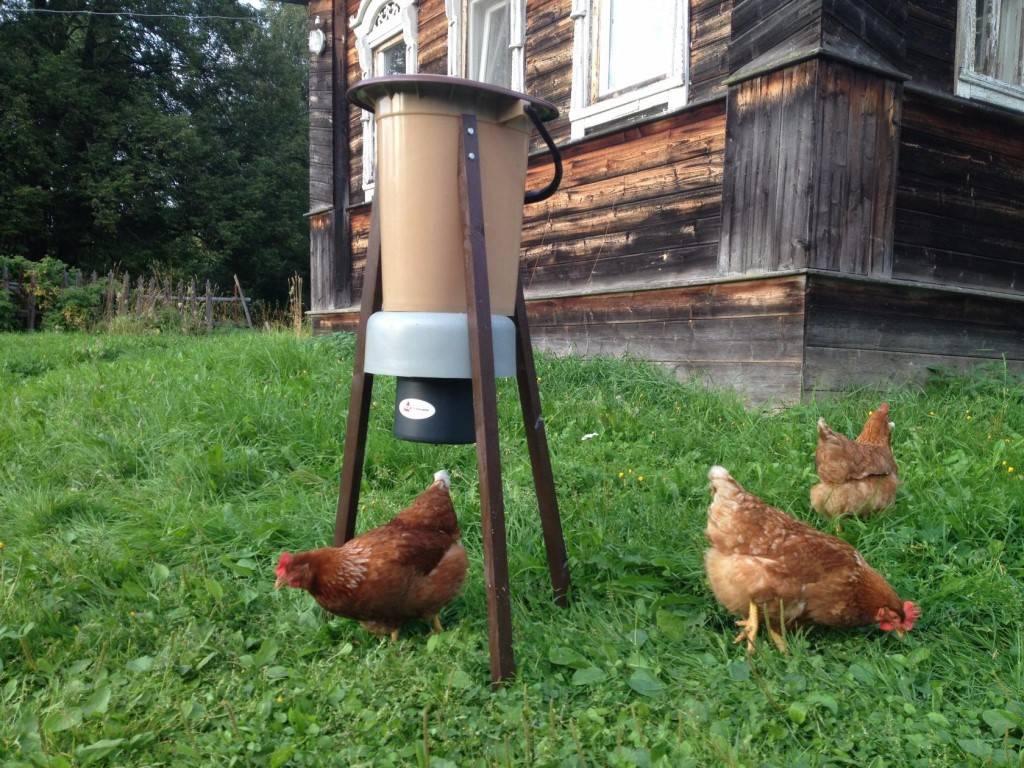 Автоматические кормушки для кур