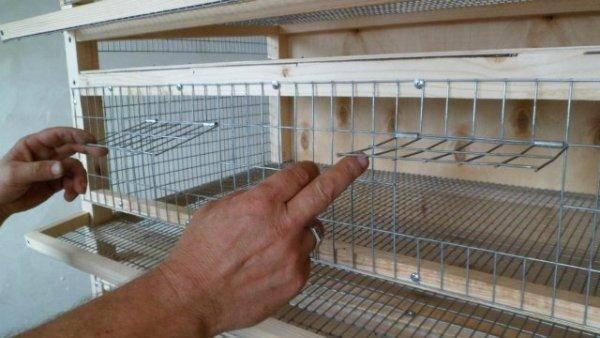 ᐉ инкубатор для перепелов своими руками, инкубация в домашних условиях, сроки вывода перепелов, видео - my-na-dache.ru