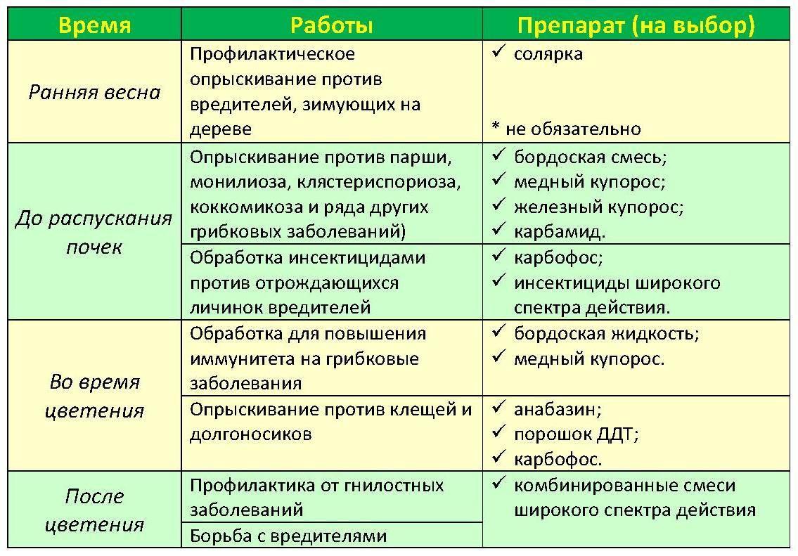 """Подкормка яблонь весной мочевиной - журнал """"совхозик"""""""