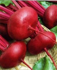 Стабильно урожайная и невероятно вкусная свекла «египетская плоская» для лучших борщей, заготовок и салатов