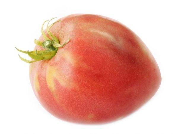 Описание сорта томата цифомандра — особенности выращивания