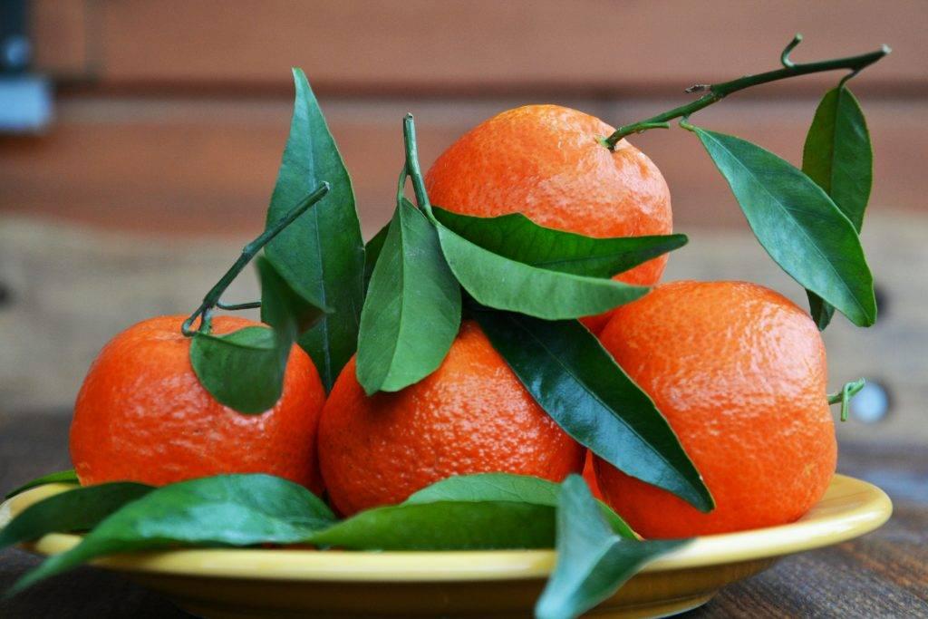 Апельсин, скрещенный с гранатом: что за фрукт, как называется, существует ли