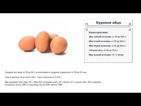 Сколько весит куриное яйцо без скорлупы: описание — selok.info