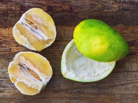 Помело — описание, польза и вред фрукта, состав, калорийность. как выбрать помело? выращивание в домашних условиях