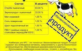 Состав комбикорма для кроликов, свиней, кур и коров дает рентабельный бизнес