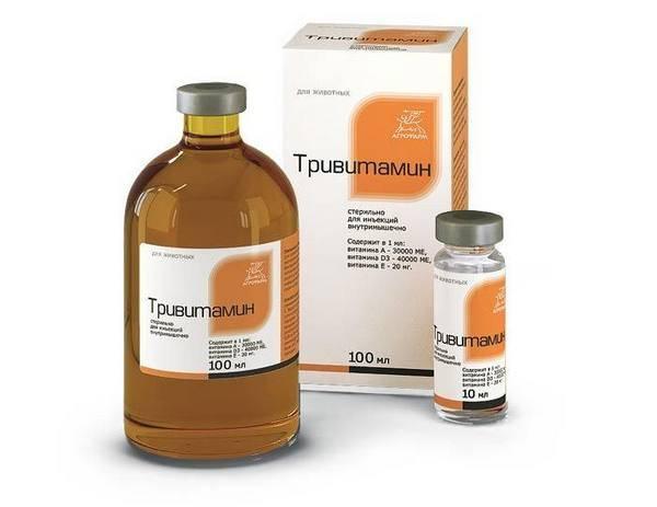 Описание и инструкция по применению препарата тривитамин п для цыплят