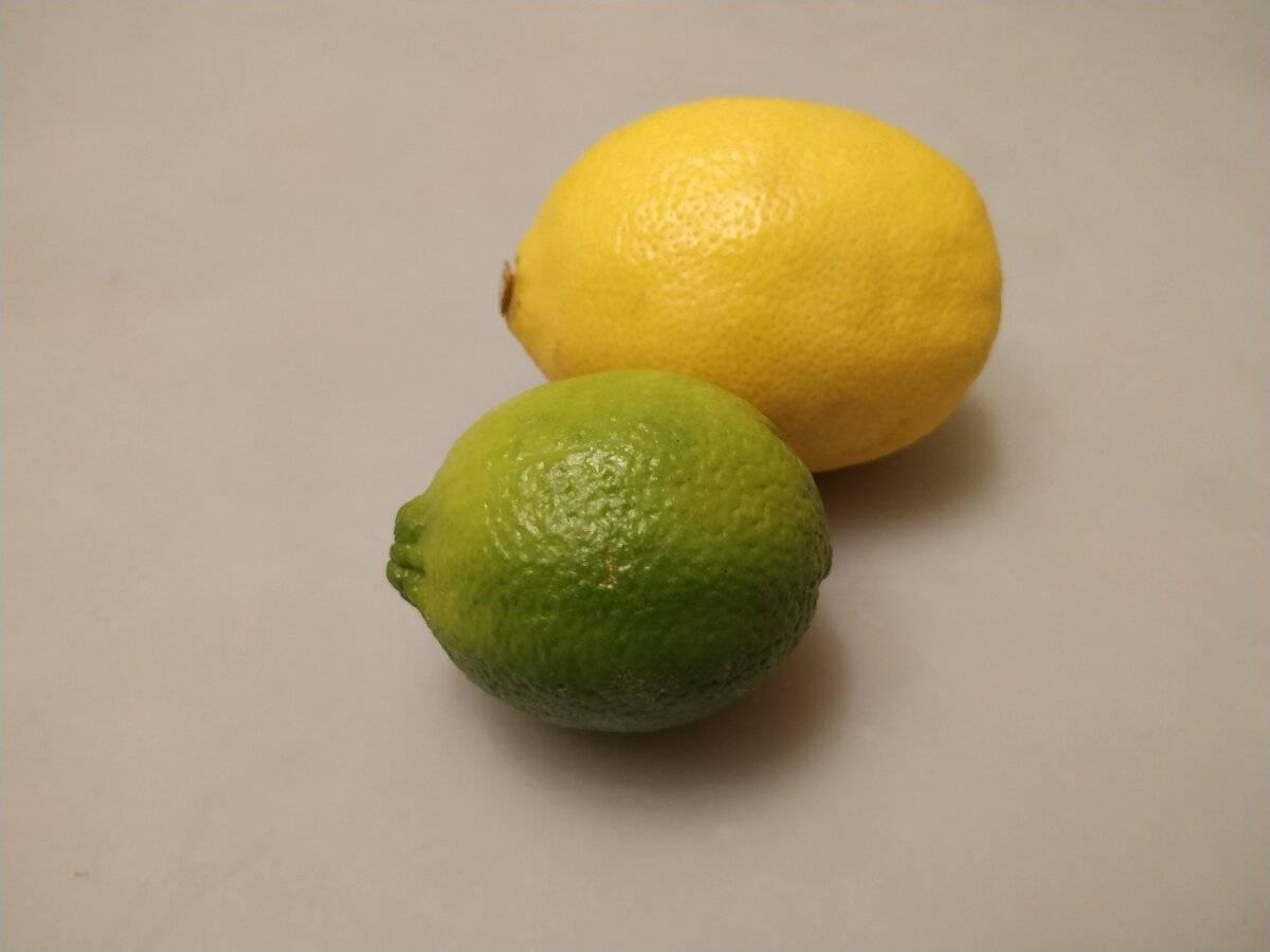 Чем отличается лимон от лайма и в чем их польза