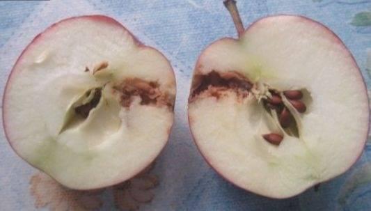 Чтобы яблоки не темнели