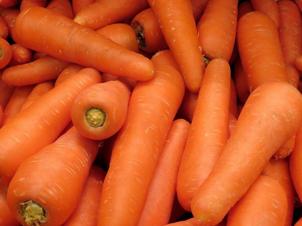 Как сушить морковь: правильная сушка в домашних условиях - засушим.ru