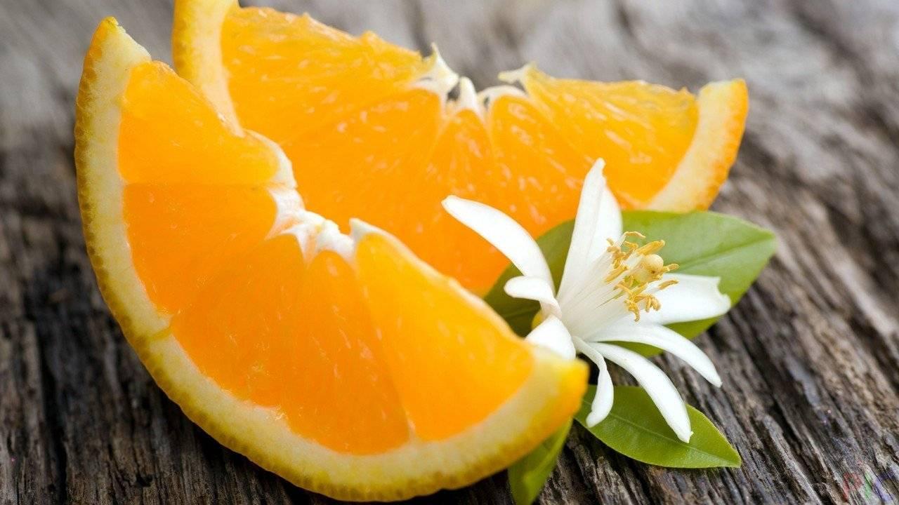 Что полезнее - мандарин или апельсин? где больше витаминов - в апельсине или мандарине :: syl.ru