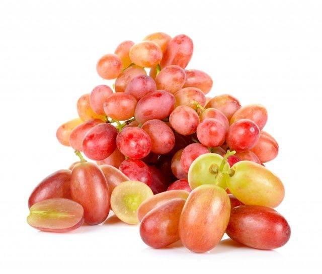 Виноград байконур: история, внешний вид, товарные и вкусовые качества плодов + особенности посадки и выращивания и фото
