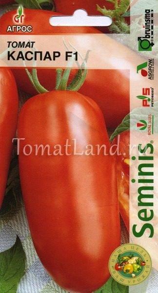 Томат генерал: описание, выращивание, уход, фото
