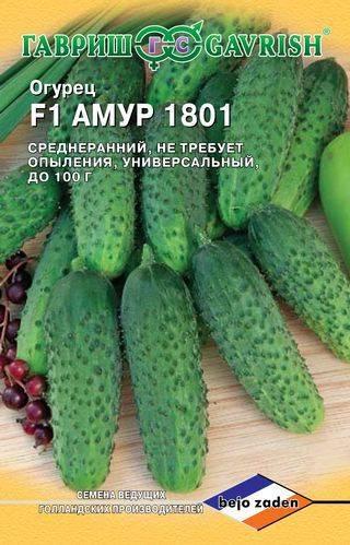 Огурец амур f1: отзывы, описание и характеристика сорта фото