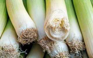 Как сохранить лук-порей