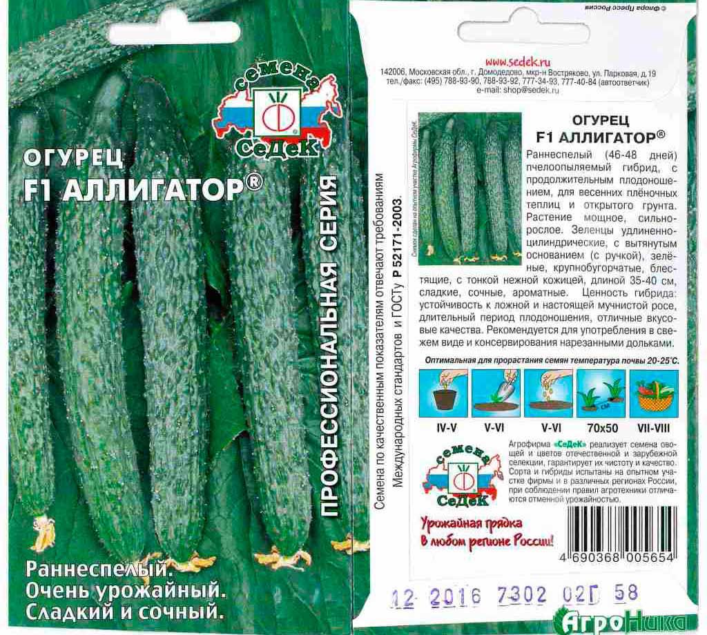 Огурец аллигатор f1: описание китайского сорта, выращивание куста в теплице, посадки и уход, фото и видео, отзывы