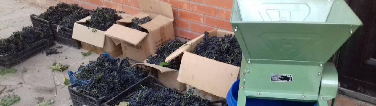 Дробилка для винограда, давилка своими руками с гребнеотделителем, мялка и измельчитель, как сделать, чертежи