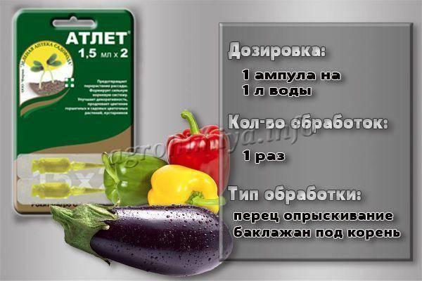 Атлет для томатов: отзывы, полив, обработка, опрыскивание