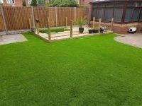 Какая газонная трава лучше и какие семена выбрать для газона на даче