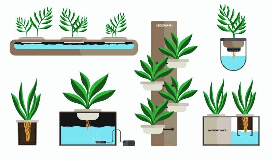 Гидропоника в домашних условиях своими руками: как сделать установку