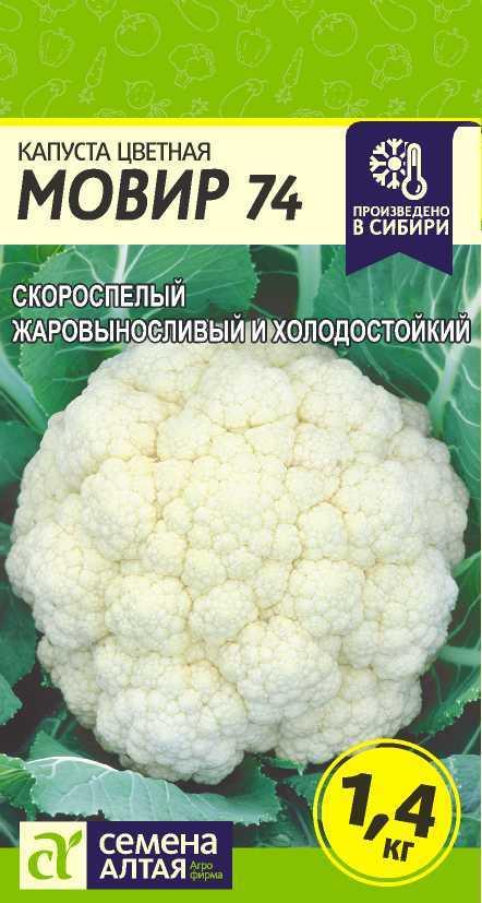 Описание цветной капусты мовир 74