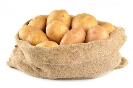 Картофель сынок – описание сорта, фото, отзывы