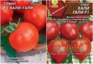 Крупноплодные биф-томаты: что это и с чем их едят
