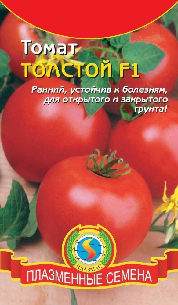 Томат дино f1: описание сорта, отзывы об урожайности помидоров, фото семян