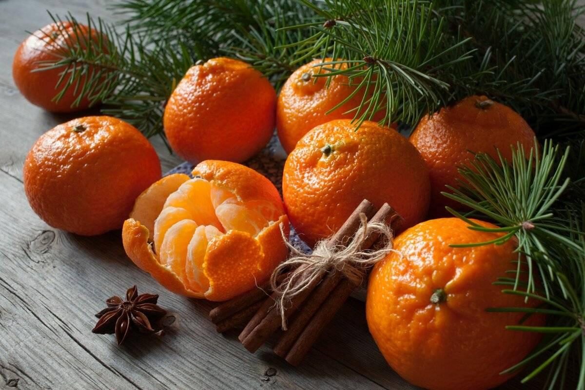 Танжерин, что за фрукт, описание и свойства сitrus tangerina