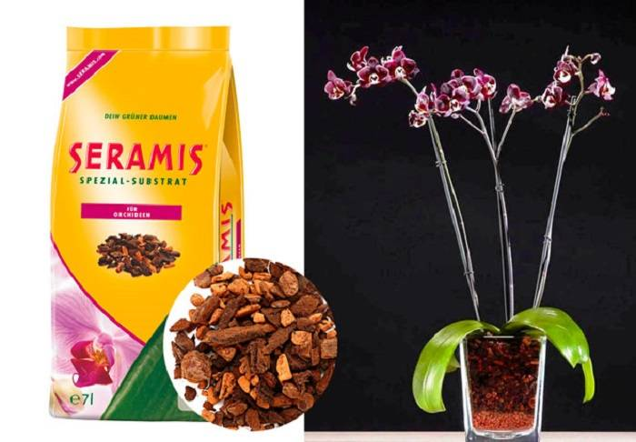Серамис для орхидей, грунт с удобрением: характеристика, особенности применения