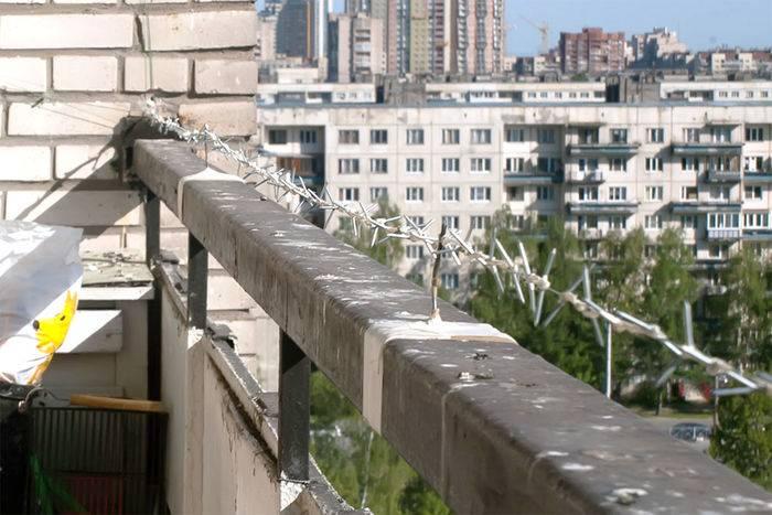 Как избавиться от голубей на балконе: чем отпугнуть и отвадить птиц навсегда