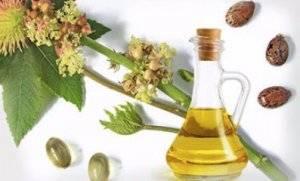 Касторовое масло для цветов: секреты пышного цветения