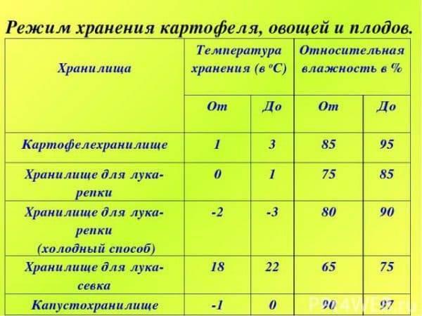 В чем хранить лук-севок до посадки после покупки, при какой температуре это делать до весны в квартире, как правильно держать зимой в погребе и домашних условиях?