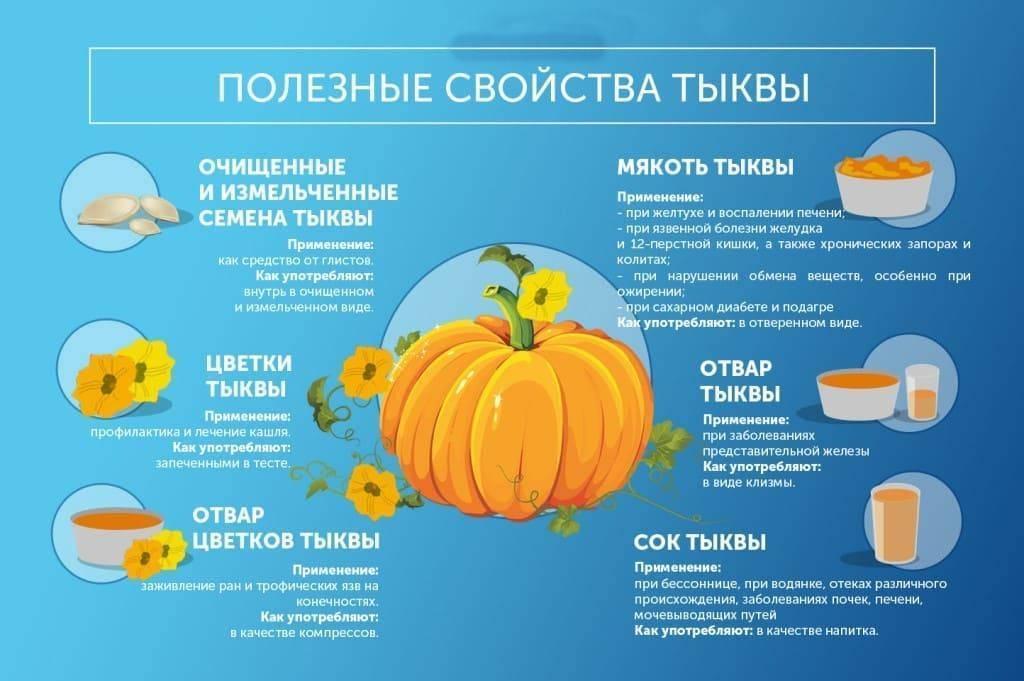 Особенности посадки и выращивания мускатной тыквы: рекомендации профи